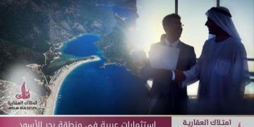 استثمارات عربية في منطقة البحر الأسود