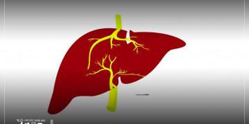 رقم عالمي جديد لعمليات زراعة الكبد في تركيا