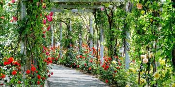 Turquie : Grand parc public à Akçaabat et un autre au centre de Trabzon