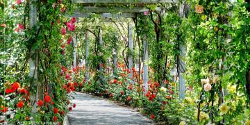 حديقة عامة كبرى في منطقة أكشبات وأخرى في مركز طرابزون