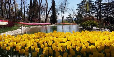 Quel est le plus beau parc d'Istanbul? Comment peux-je y arriver?