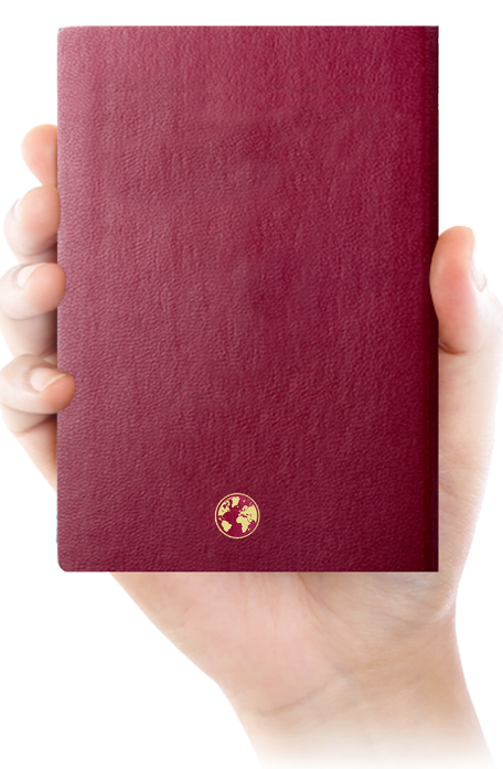hand with passport image