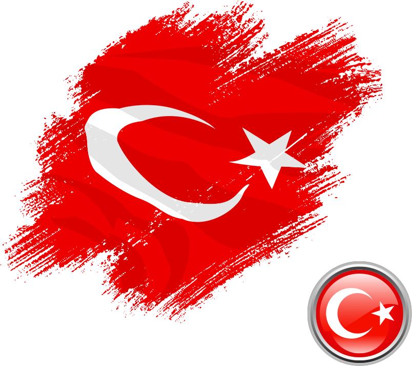 لماذا الجنسية التركية
