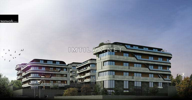 Magic Yalova Project