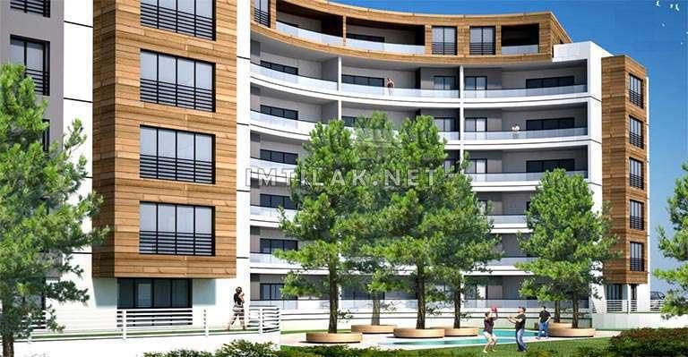 Pine Palace Project