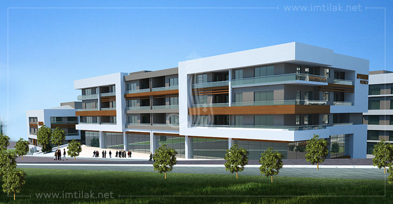 IMT-11 Trabzon Spring Project