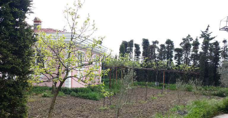 مزرعة مميزة في كواكلي