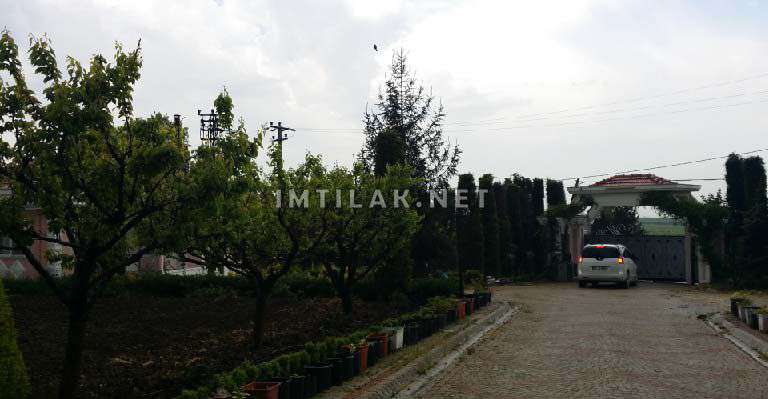 Farm Property Investment Istanbul - Kouakly Farm