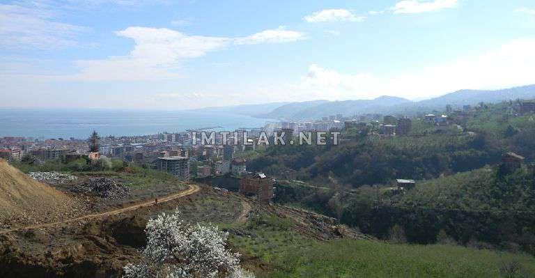 Marin Trabzon Project