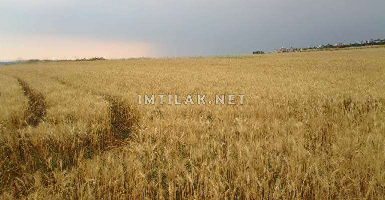 Land For Sale In Turkey Invest In Istanbul Real Estate Imtilak